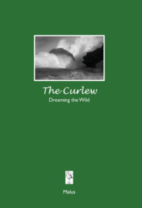 The Curlew Nature Journal